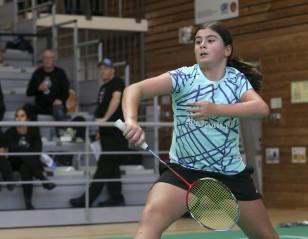 Tokyo 2020: Para Badminton In Numbers